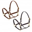 Ovation® Elite Stable Halter