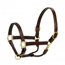 HK Americanan Triple Stitched Leather Halter- 1 Inch Wide
